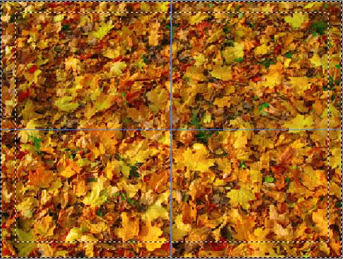 инвертирование выделения в Adobe Photoshop